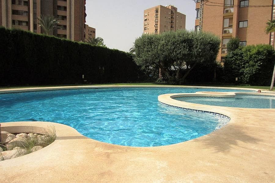 Foto - Apartamento en venta en calle Poniente, Poniente en Benidorm - 302104688