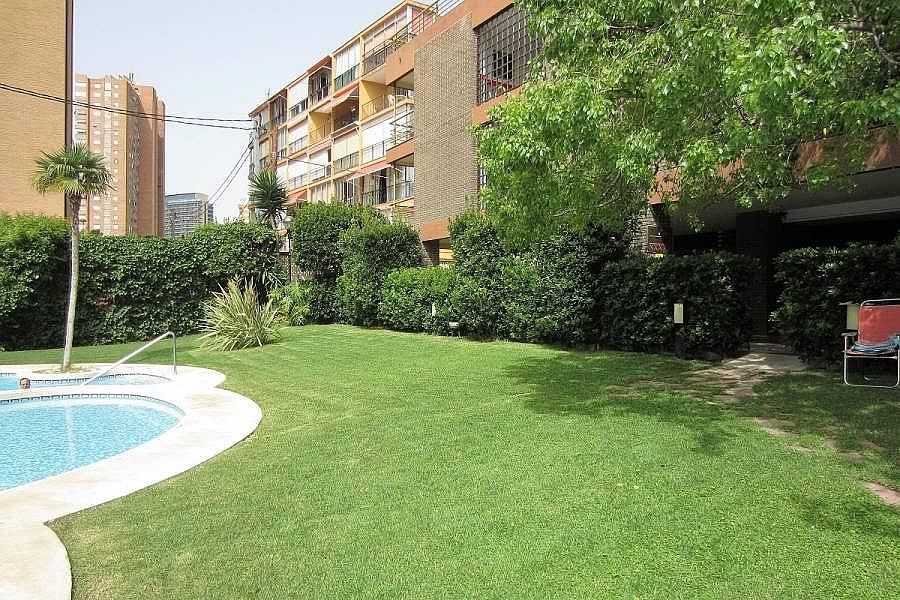 Foto - Apartamento en venta en calle Poniente, Poniente en Benidorm - 302104691