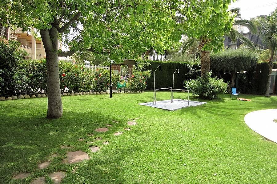 Foto - Apartamento en venta en calle Poniente, Poniente en Benidorm - 302104694