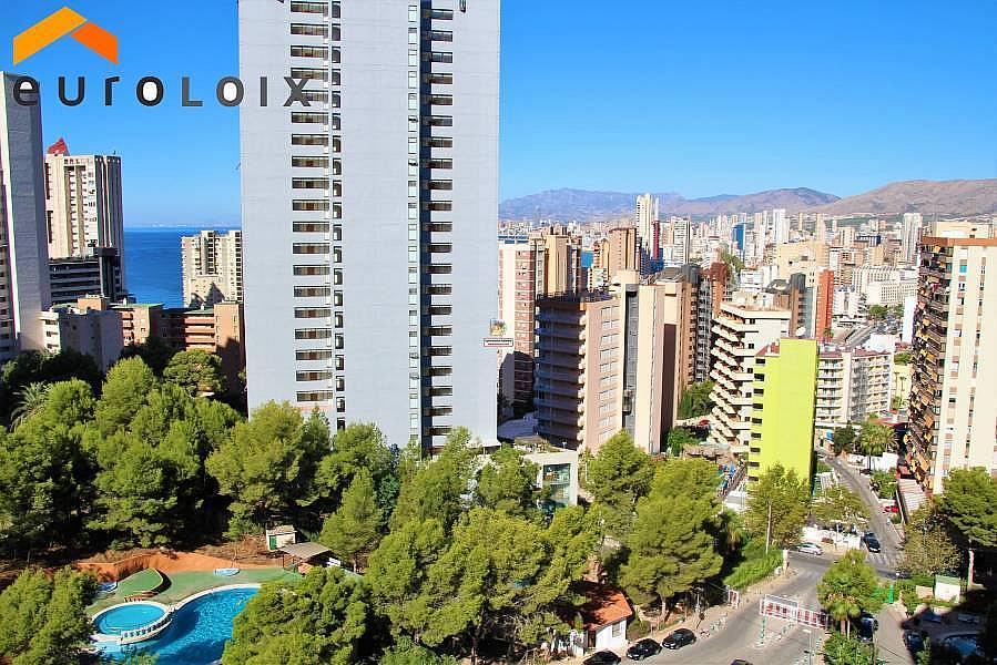 Foto - Apartamento en venta en calle Rincon de Loix Alto, Benidorm - 313090898