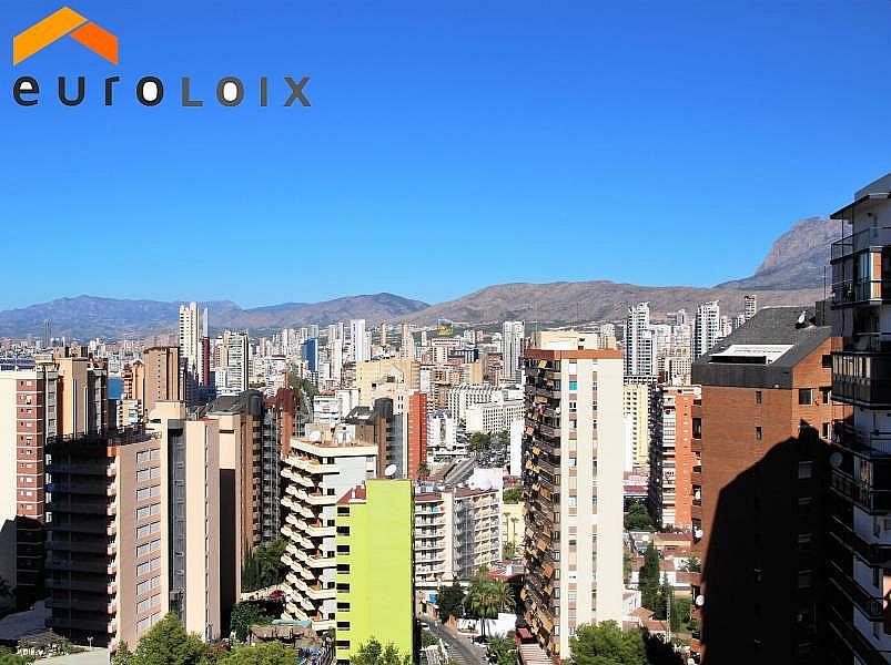 Foto - Apartamento en venta en calle Rincon de Loix Alto, Benidorm - 313090904