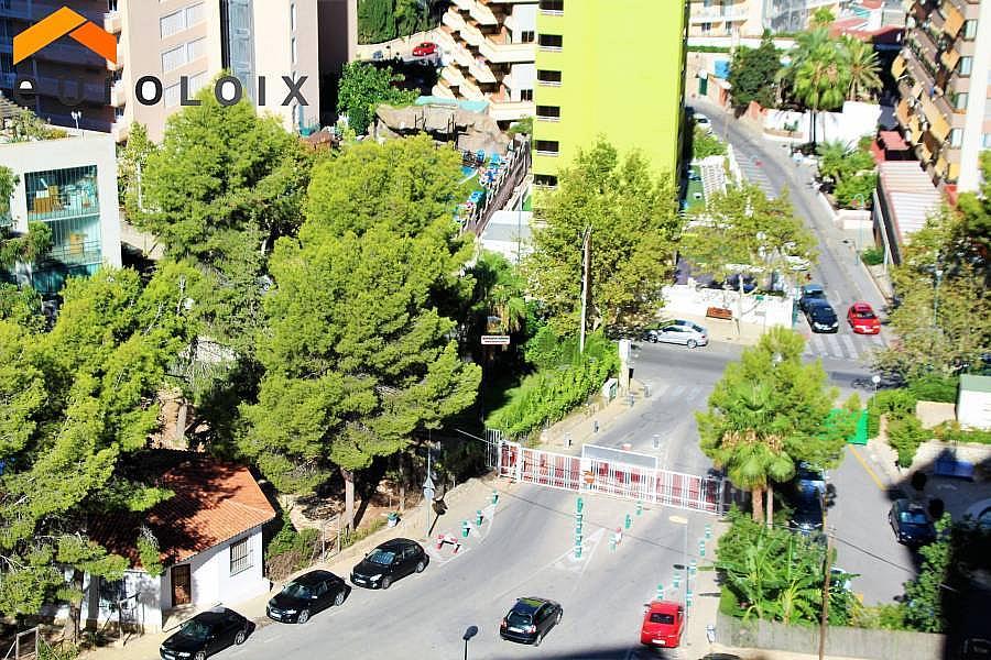 Foto - Apartamento en venta en calle Rincon de Loix Alto, Benidorm - 313090928