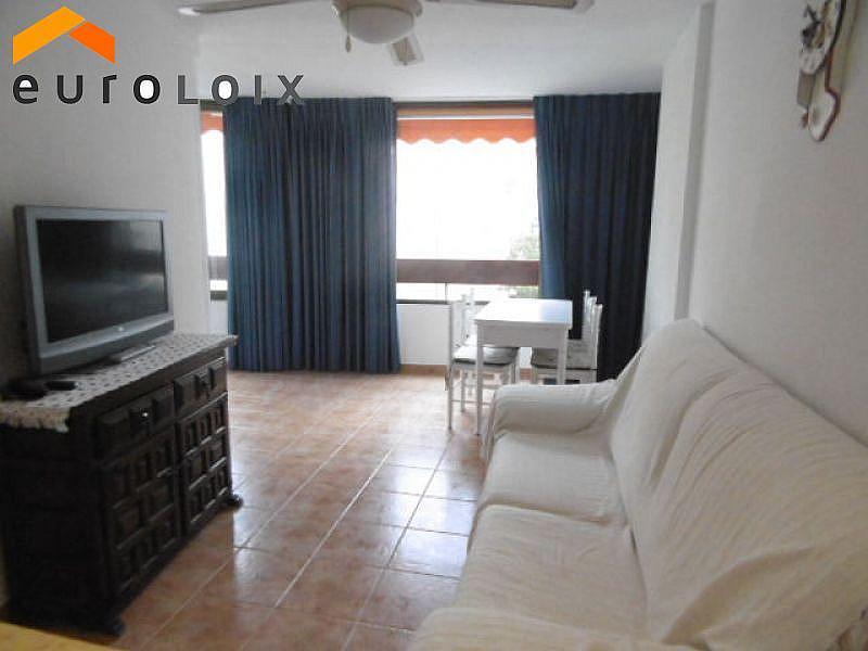 Foto - Apartamento en venta en calle Rincon de Loix, Rincon de Loix en Benidorm - 322867460