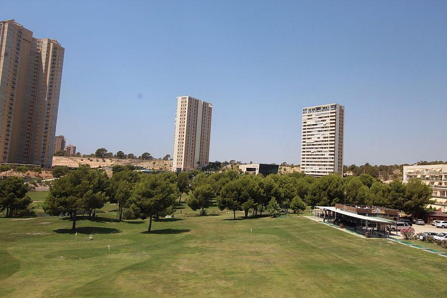 Foto - Apartamento en venta en calle Poniente, Poniente en Benidorm - 325568868