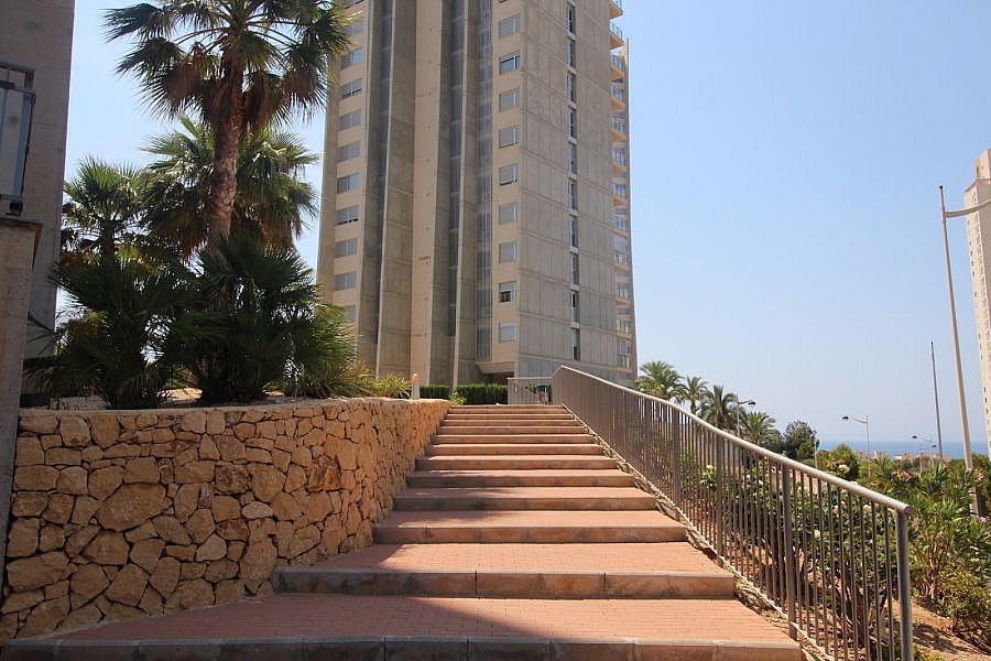 Foto - Apartamento en venta en calle Poniente, Poniente en Benidorm - 325568895