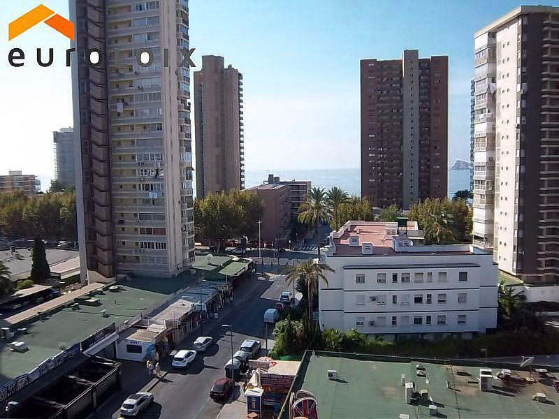 Foto - Apartamento en venta en calle Avenida del Mediterraneo, Benidorm - 329999951