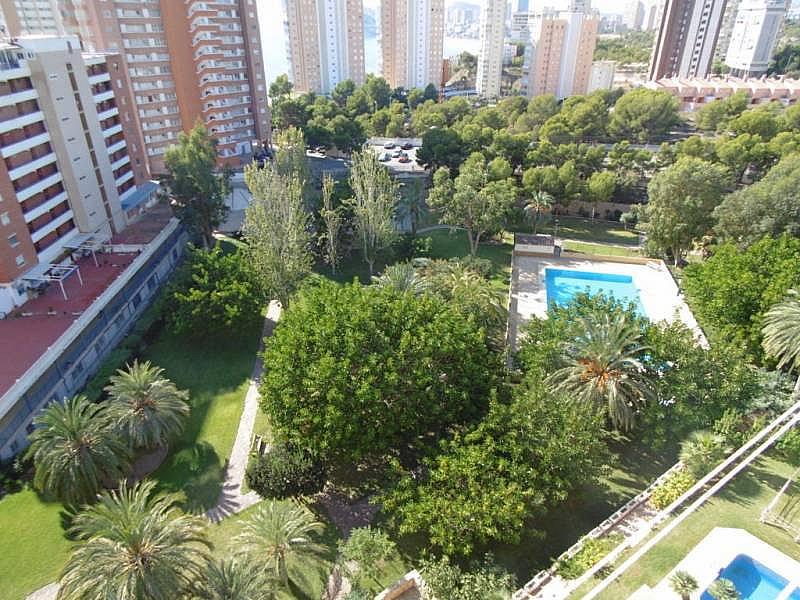 Foto - Apartamento en venta en calle Poniente, Poniente en Benidorm - 224345833
