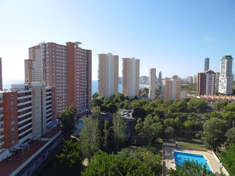 Foto - Apartamento en venta en calle Poniente, Poniente en Benidorm - 224345839