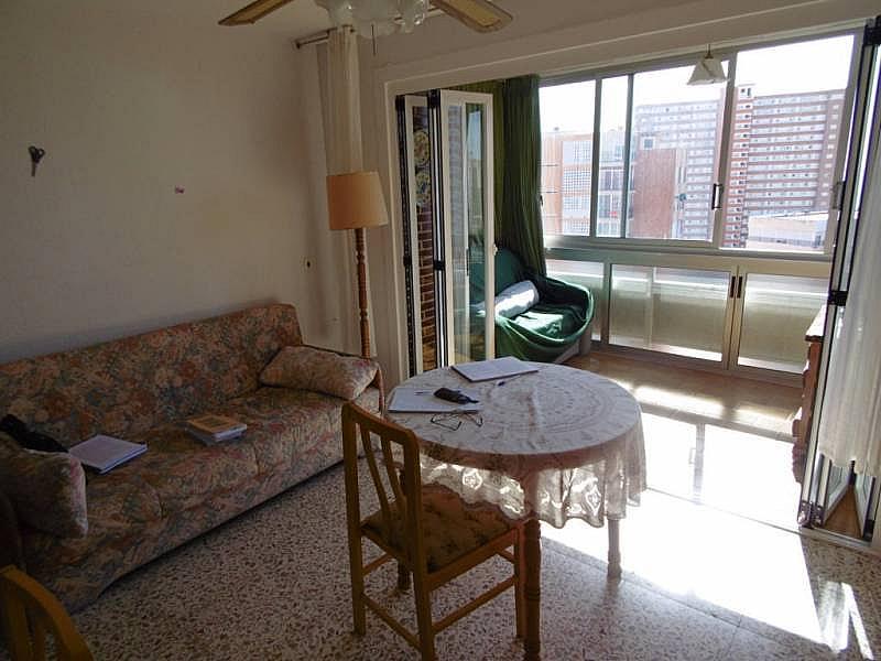 Foto - Apartamento en venta en calle Poniente, Poniente en Benidorm - 224345842