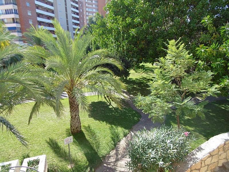 Foto - Apartamento en venta en calle Poniente, Poniente en Benidorm - 224345860