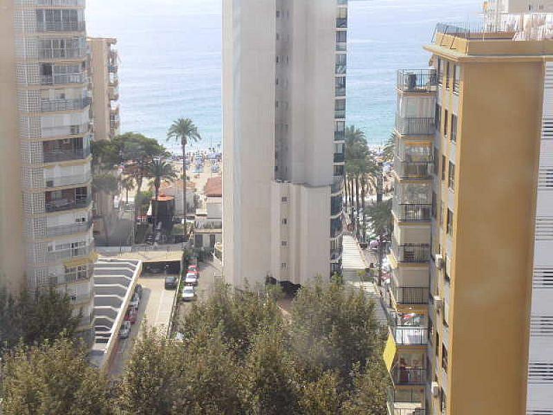 Foto - Apartamento en venta en calle Levante, Levante en Benidorm - 334154812