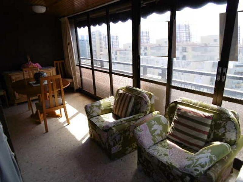 Foto - Apartamento en venta en calle Levante, Levante en Benidorm - 334154857