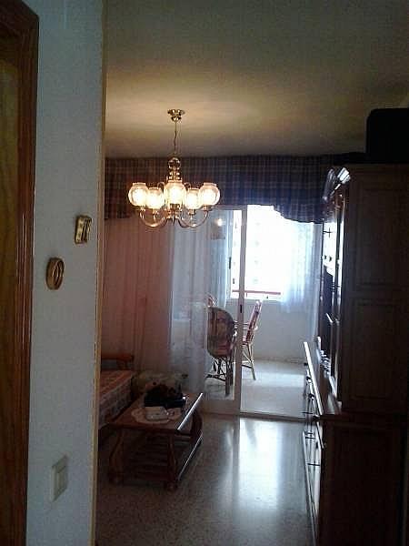 Foto - Apartamento en venta en calle Levante, Levante en Benidorm - 181859444