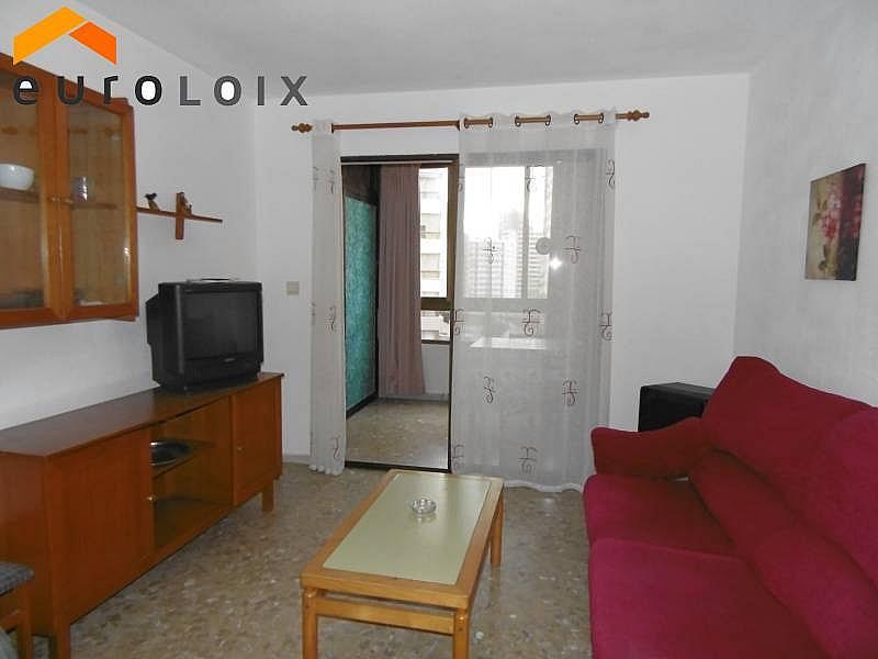 Foto - Apartamento en venta en calle Rincon de Loix Llano, Rincon de Loix en Benidorm - 181856957