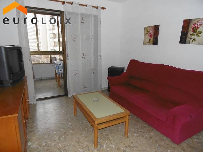 Foto - Apartamento en venta en calle Rincon de Loix Llano, Rincon de Loix en Benidorm - 181856960