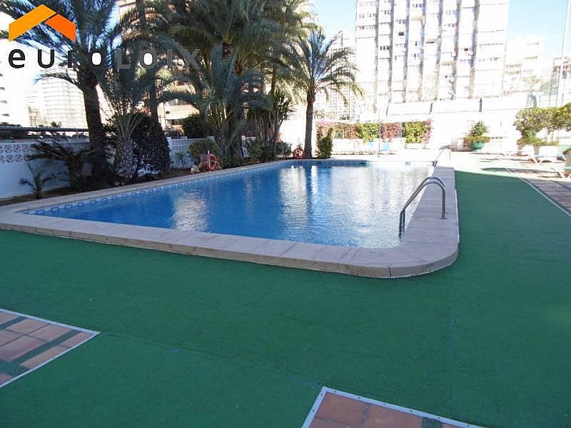 Foto - Apartamento en venta en calle Levante, Levante en Benidorm - 225203813