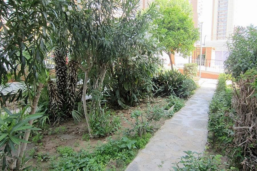 Foto - Apartamento en venta en calle Levante, Levante en Benidorm - 280969779