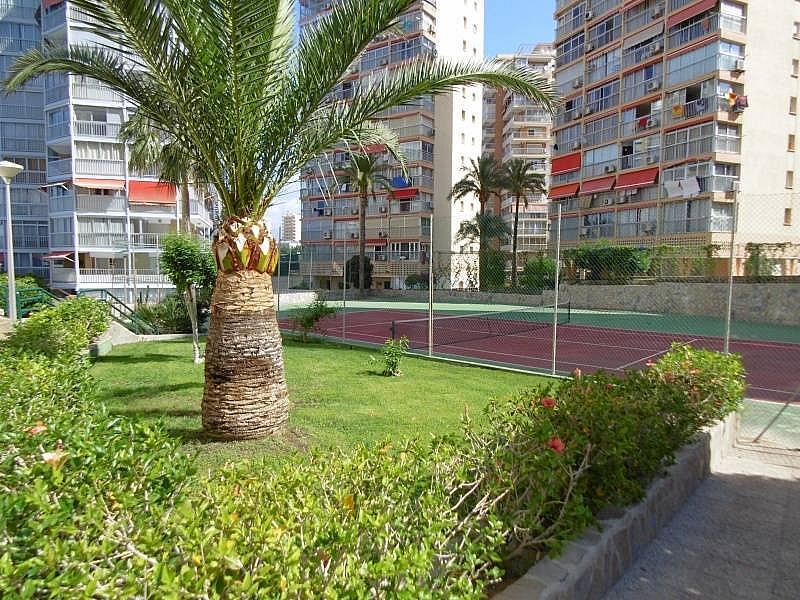 Foto - Apartamento en venta en calle Rincon de Loix, Rincon de Loix en Benidorm - 197873943