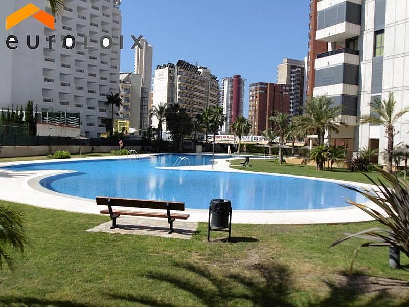 Foto - Apartamento en venta en calle Levante, Levante en Benidorm - 203584209