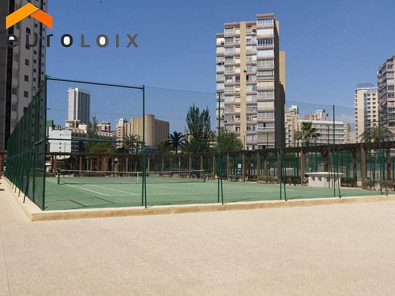 Foto - Apartamento en venta en calle Levante, Levante en Benidorm - 203584212