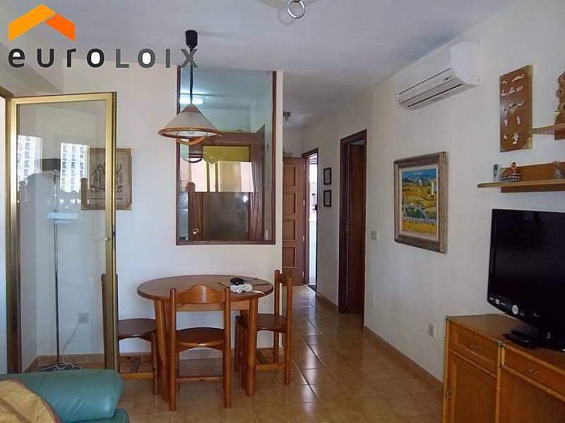 Foto - Apartamento en venta en calle Avenida del Mediterraneo, Benidorm - 206396670