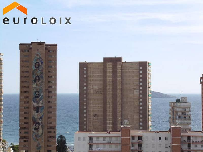 Foto - Apartamento en venta en calle Rincon de Loix, Rincon de Loix en Benidorm - 225580972
