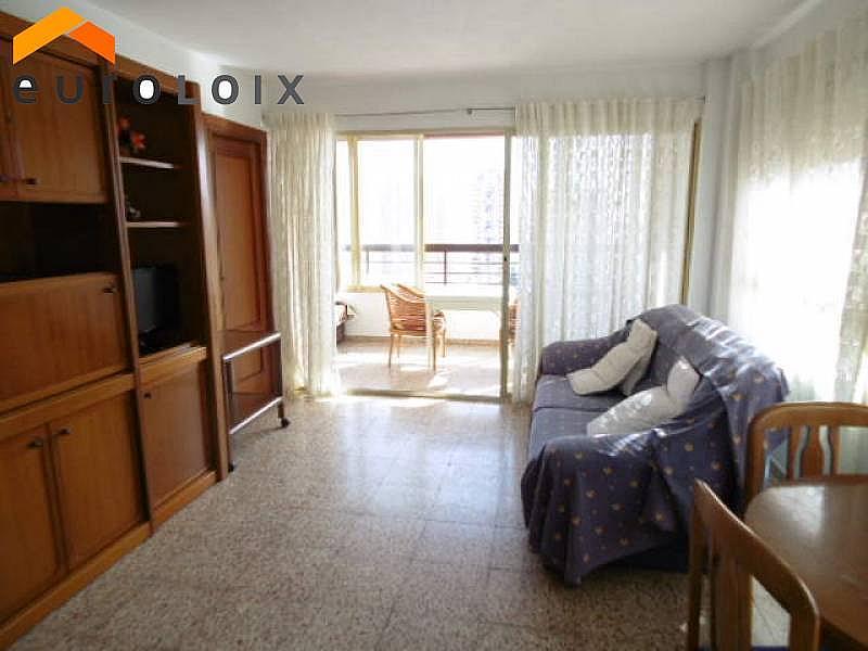 Foto - Apartamento en venta en calle Rincon de Loix, Rincon de Loix en Benidorm - 225580978