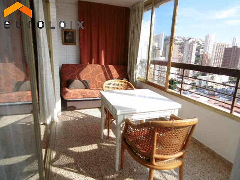 Foto - Apartamento en venta en calle Rincon de Loix, Rincon de Loix en Benidorm - 225580993