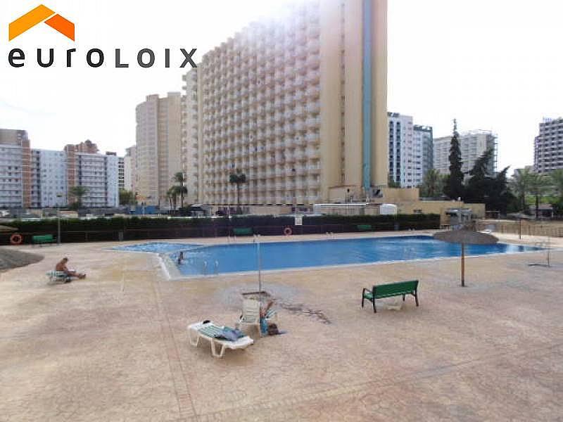 Foto - Apartamento en venta en calle Rincon de Loix, Rincon de Loix en Benidorm - 225580999