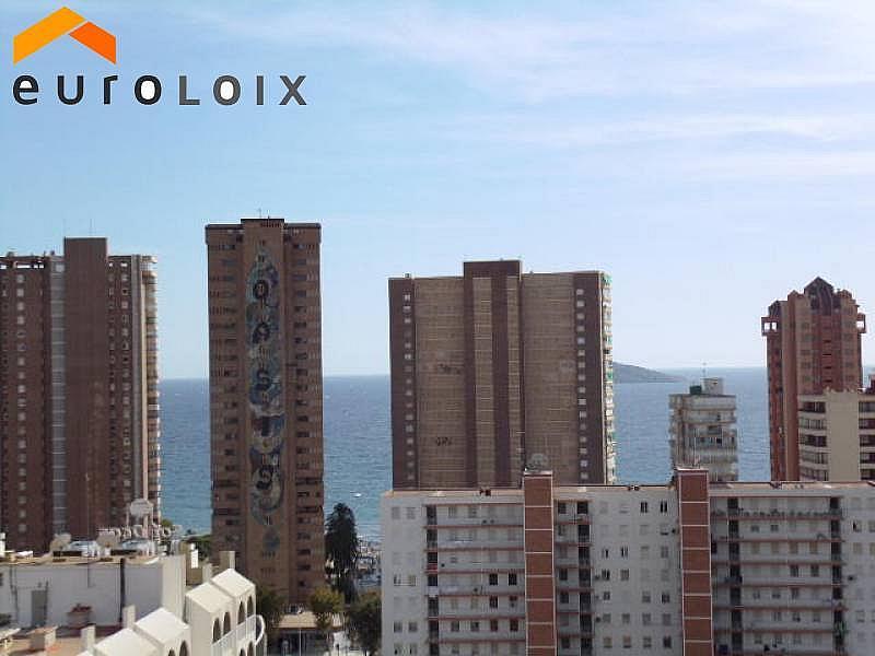 Foto - Apartamento en venta en calle Rincon de Loix, Rincon de Loix en Benidorm - 225581002