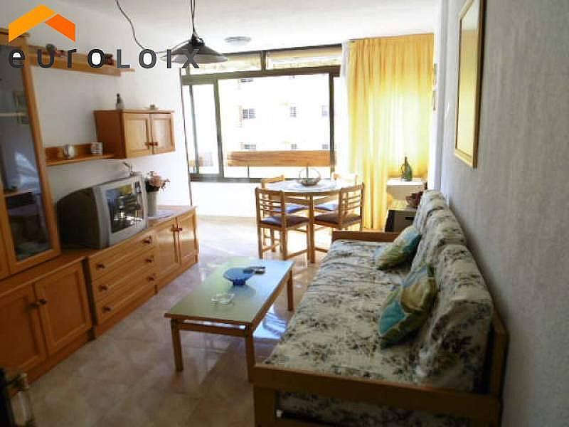Foto - Apartamento en venta en calle Rincon de Loix, Rincon de Loix en Benidorm - 214689729