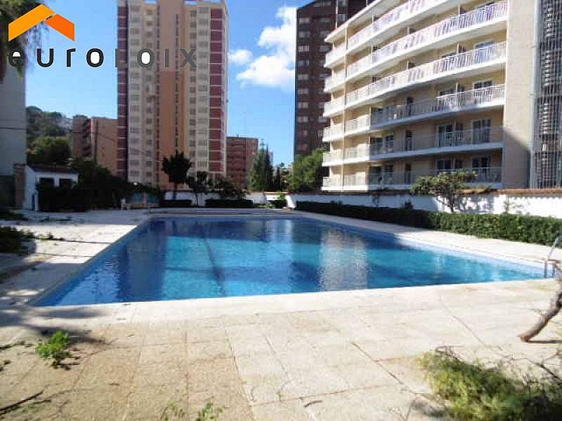 Foto - Apartamento en venta en calle Rincon de Loix, Rincon de Loix en Benidorm - 214689756