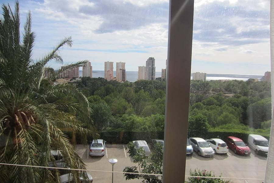 Foto - Apartamento en venta en calle Poniente, Poniente en Benidorm - 220854442