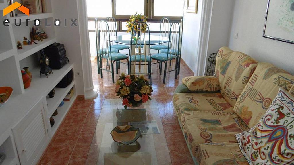 Foto - Apartamento en venta en calle Rincon de Loix, Rincon de Loix en Benidorm - 223770842
