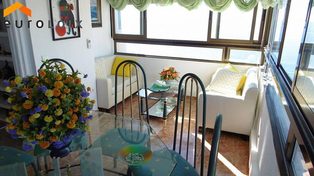 Foto - Apartamento en venta en calle Rincon de Loix, Rincon de Loix en Benidorm - 223770851