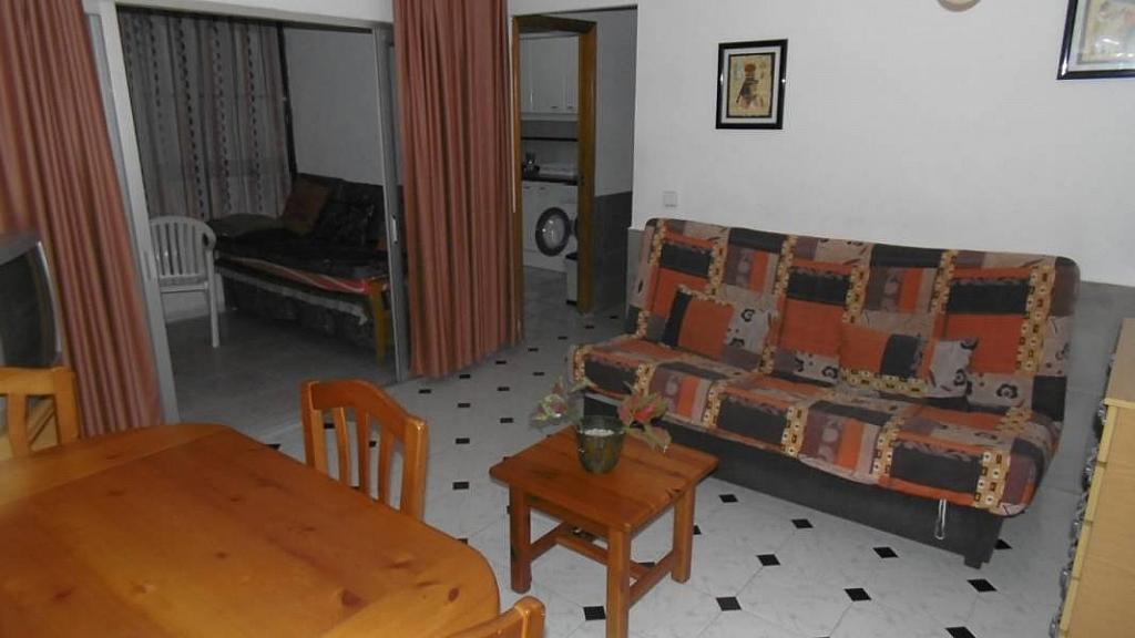 Foto - Apartamento en venta en calle Avenida del Mediterraneo, Benidorm - 232035194