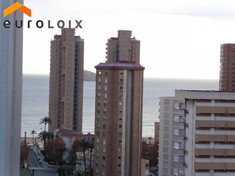 Foto - Apartamento en venta en calle Levante, Levante en Benidorm - 232353010