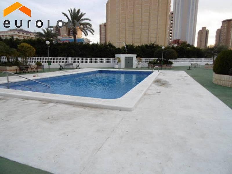 Foto - Apartamento en venta en calle Levante, Levante en Benidorm - 232353013