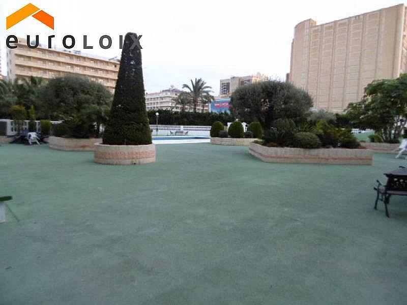 Foto - Apartamento en venta en calle Levante, Levante en Benidorm - 232353016