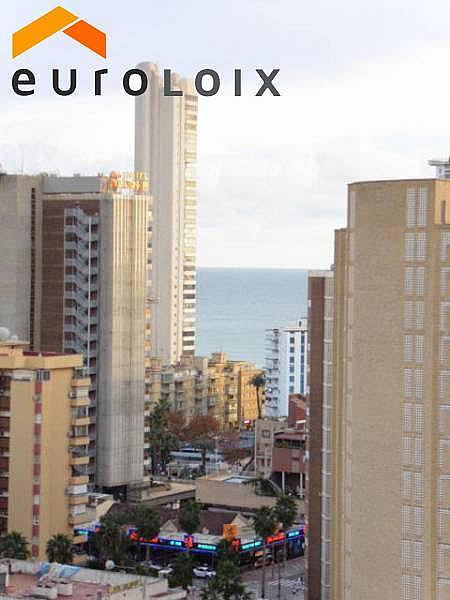Foto - Apartamento en venta en calle Levante, Levante en Benidorm - 232353019