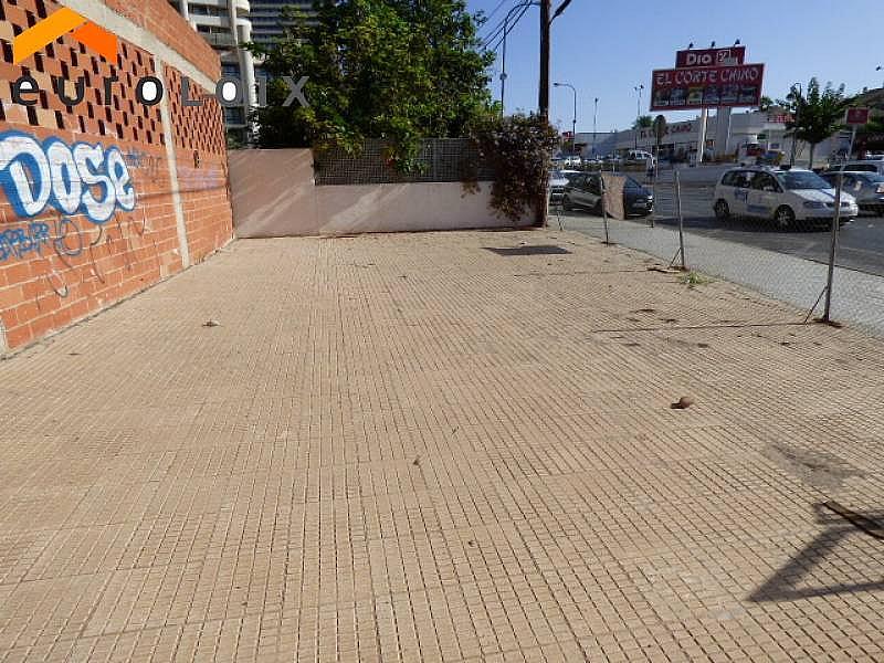 Foto - Local comercial en alquiler en calle Rincon de Loix Llano, Rincon de Loix en Benidorm - 235004457