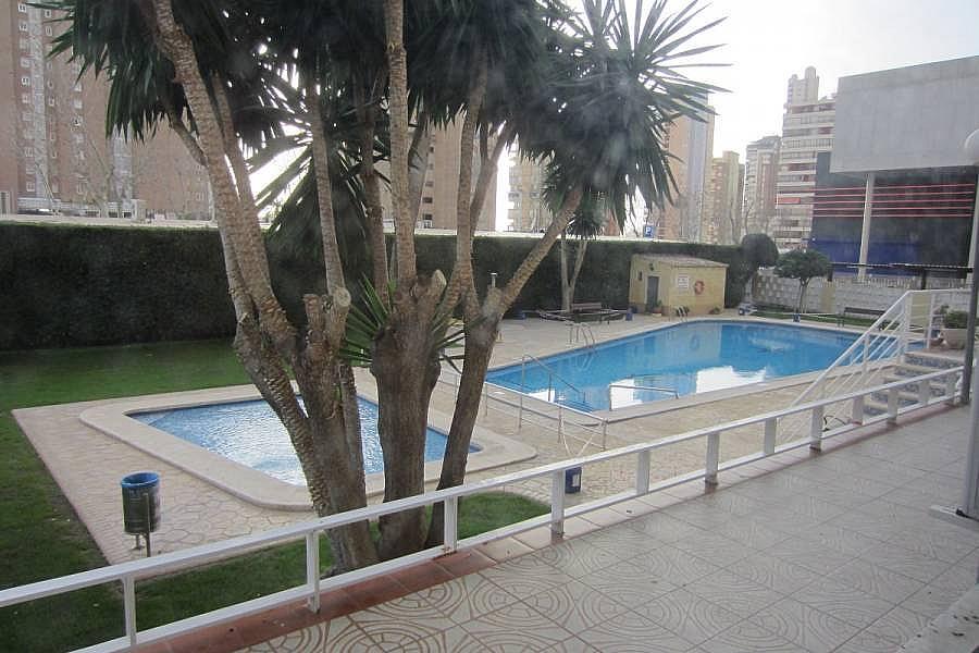 Foto - Apartamento en venta en calle Levante, Levante en Benidorm - 242567699