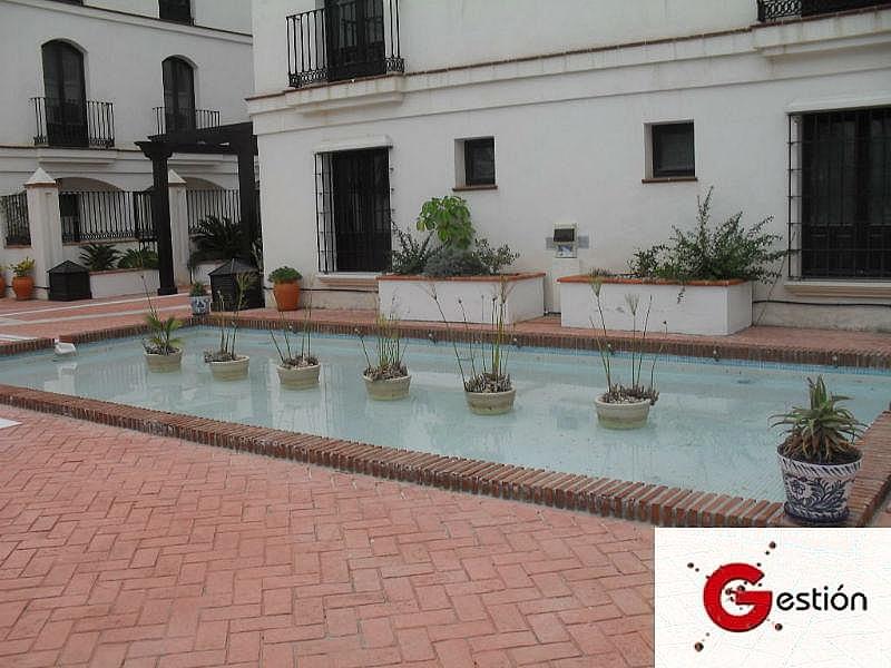 Foto2 - Apartamento en alquiler en Vélez de Benaudalla - 188368884
