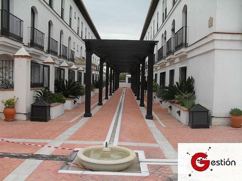 Foto1 - Apartamento en alquiler en Vélez de Benaudalla - 188368890