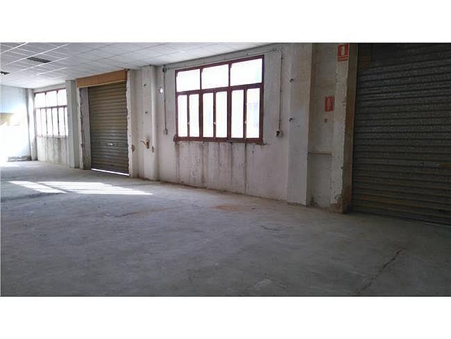 Local comercial en alquiler en Ibi - 342669198