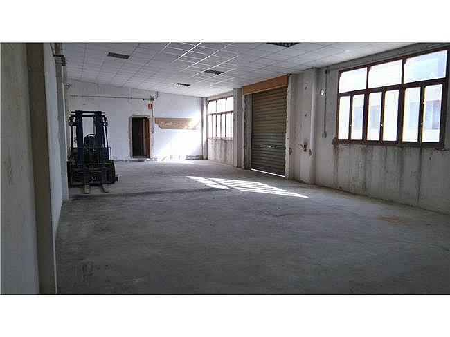 Local comercial en alquiler en Ibi - 342669201