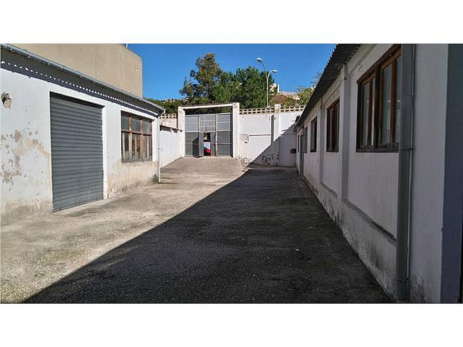 Local comercial en alquiler en Ibi - 342669222
