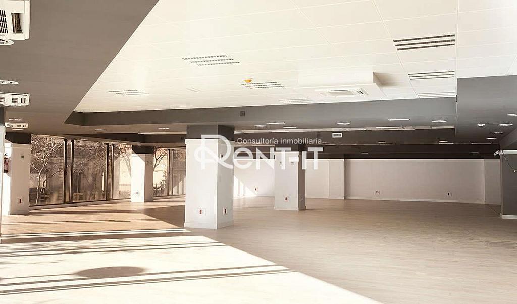 1450 04.jpg - Oficina en alquiler en Eixample dreta en Barcelona - 288844579
