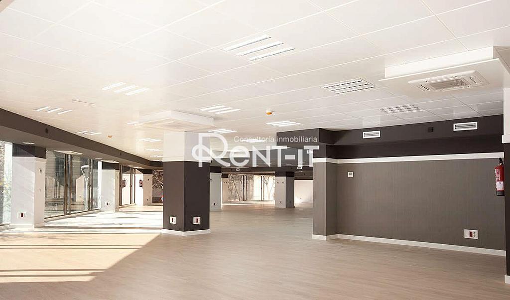 1450 05.jpg - Oficina en alquiler en Eixample dreta en Barcelona - 288844585