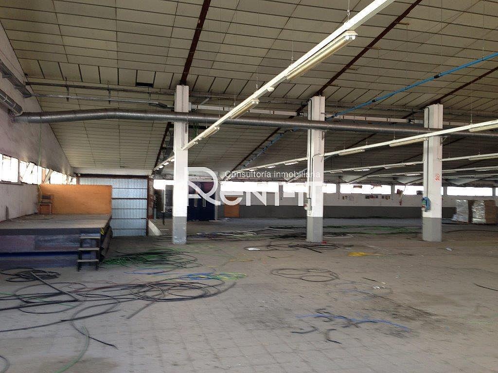 14159270.jpg - Nave industrial en alquiler en Molins de Rei - 288838915